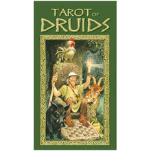 Load image into Gallery viewer, Tarot of Druids
