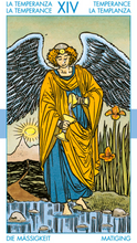 Load image into Gallery viewer, Tarot for Everyone Kit