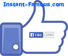 2,500 Facebook Likes for Website Page