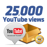 25,000 Youtube Views