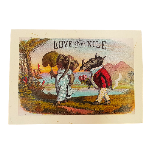 Love On The Nile Valentine's Card
