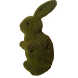 Moss Bunny Called Tilly
