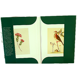 National Library Classic Collection Gifts Card Set