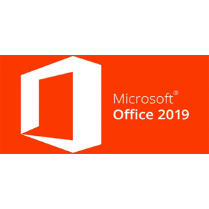 Office Pro 2019 Win & Mac Microsoft (ESD)