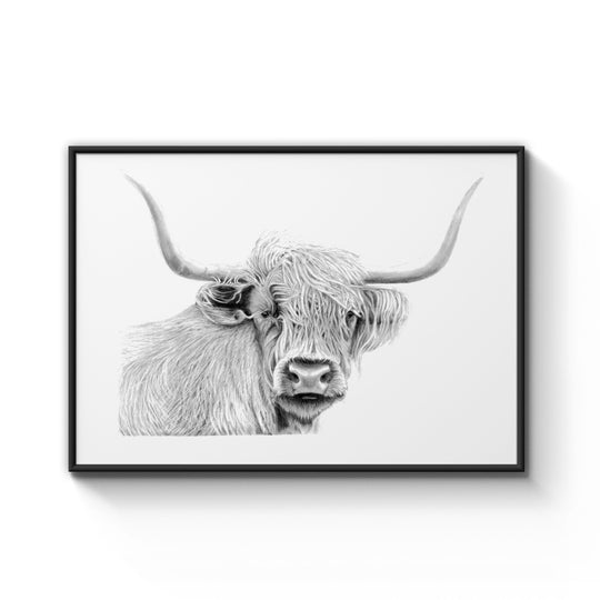 Highland Cow Print Framed