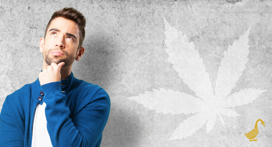 What is Clinical Endocannabinoid Deficiency