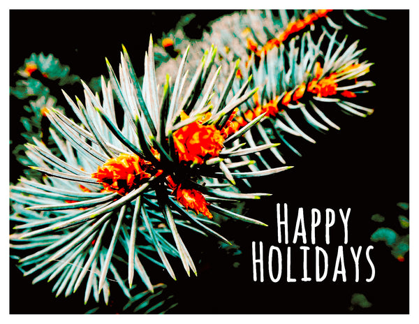 Holiday -- Holiday Pine Needles