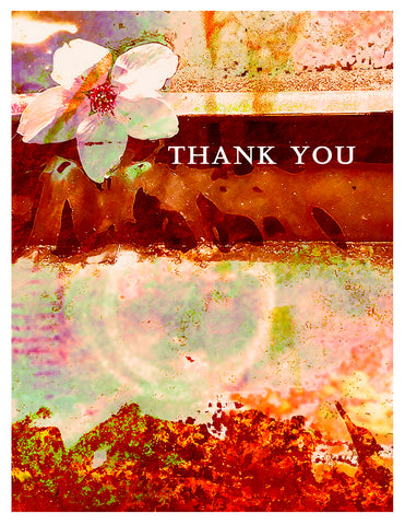 Thank You -- Thank You Water Cherry Blossom