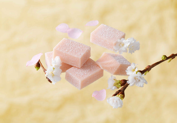 "COMING SOON: Nama Chocolate ""Sakura Fromage"" - ROYCE' Confect USA Online Boutique"