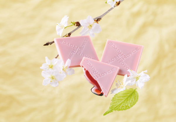 "COMING SOON: Prafeuille Chocolat ""Sakura Cube"" - ROYCE' Confect USA Online Boutique"