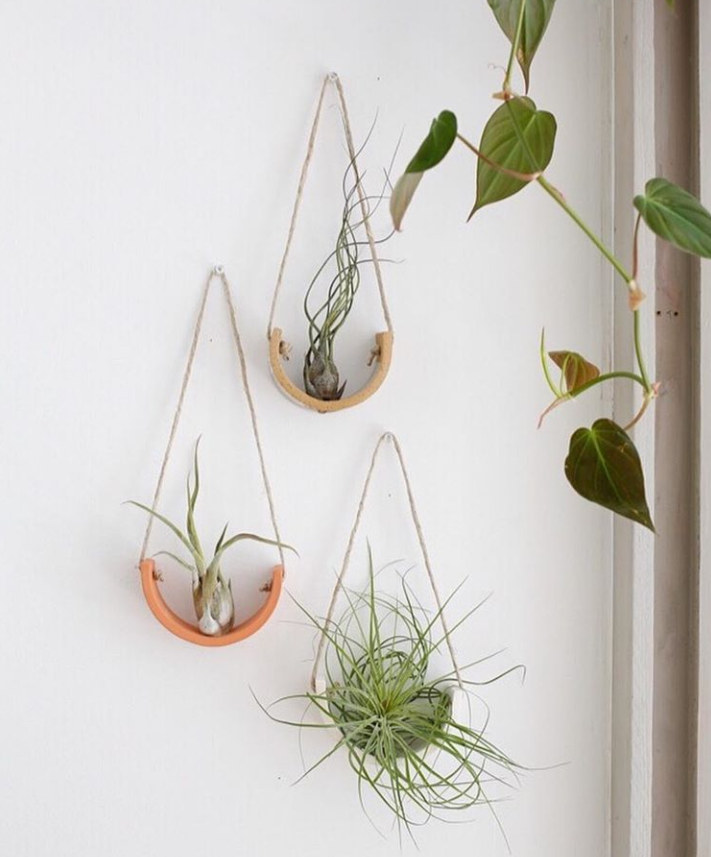 ceramic air plant hanger
