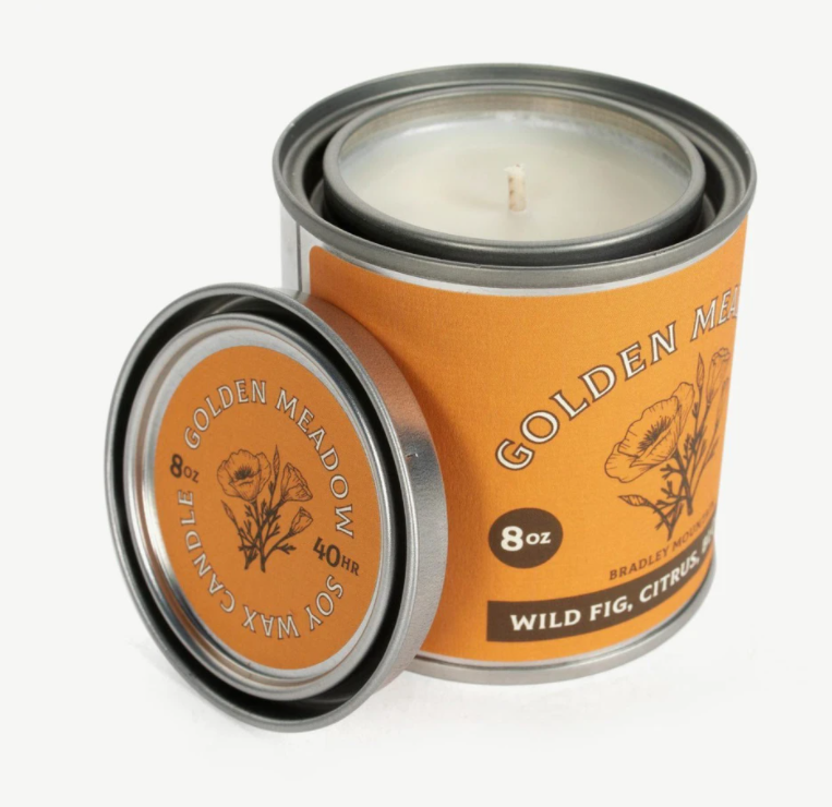 wild fig travel candle