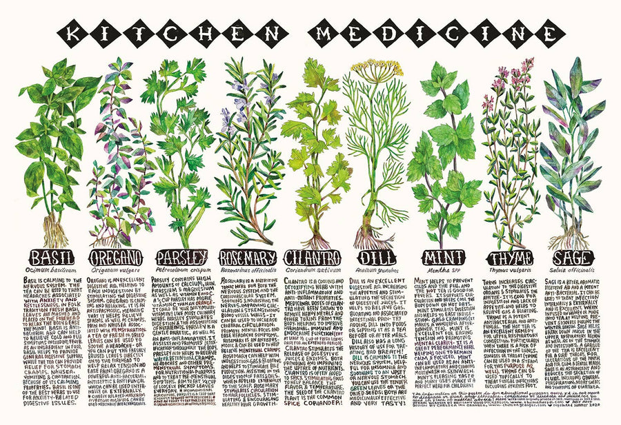 kitchen herb poster