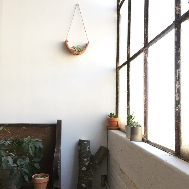 Terracotta Hanging Air Plant Cradle