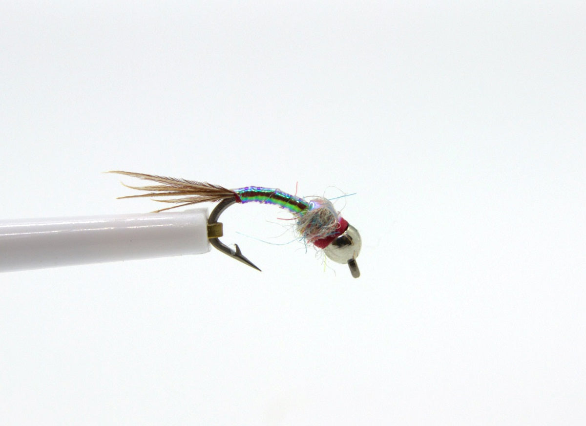 Tungsten Rainbow Warrior Nymph