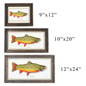 Trout Giclee Framed Prints by Paul Laemmlen