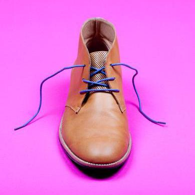 Swanky Blue Shoe Laces - Creative Finds