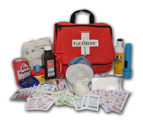 Basic Equine Medical Kit
