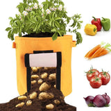 (50% OFF ONLY TODAY!) Grow Planter Container Bag