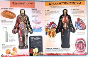 【 FREE SHIPPING】Anatomy of The Human Body Book 3D Picture Book