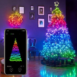 Custom LED string lights(smart Decorations )
