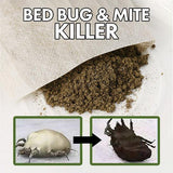 Bed Bug Buster™ (10 Packs)