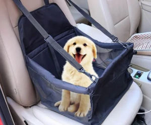 "Pet Carrier ""I love not having to leave my pup Cosmo home!  He goes every where with me now!!!"" ⭐⭐⭐⭐⭐ - Mara G.                                St. Pete FL"