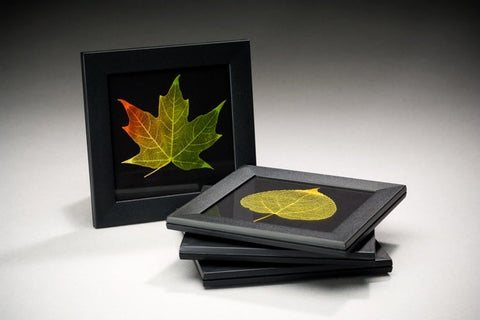 Set of Four Leaf Coasters