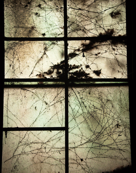 Allegheny Social Hall: Window Ghosts 3