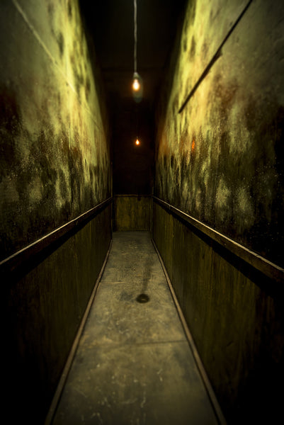 ScareHouse: Green Hall