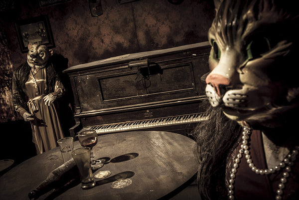 ScareHouse: Saloon Cat