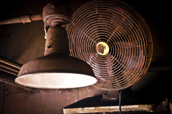 Duquesne Steel Works: Fan