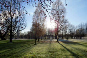Glasgow Green on a Winter's Morning