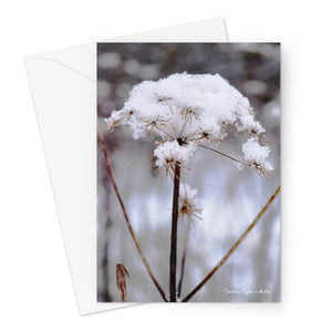 Snow Sparkle Greeting Card