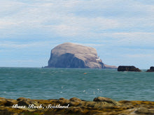 Load image into Gallery viewer, Bass Rock Close Up (oil) Greeting Card