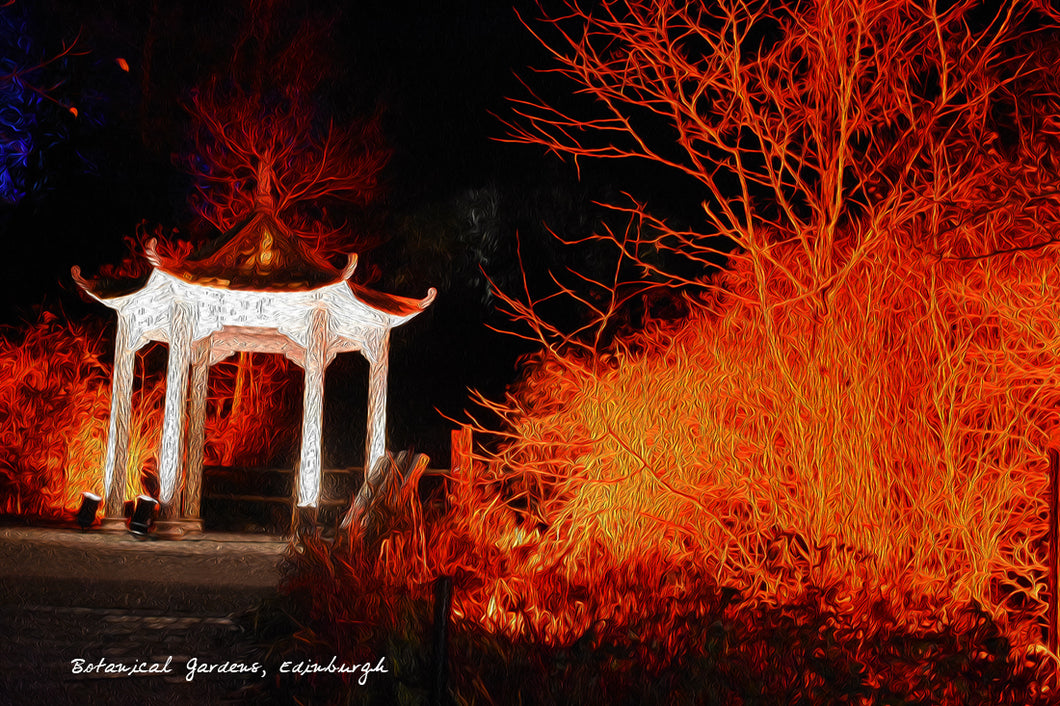 Botanic Chinese Lights Red Greeting Card