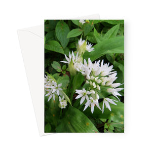 White Wild Flowers - Greeting Card