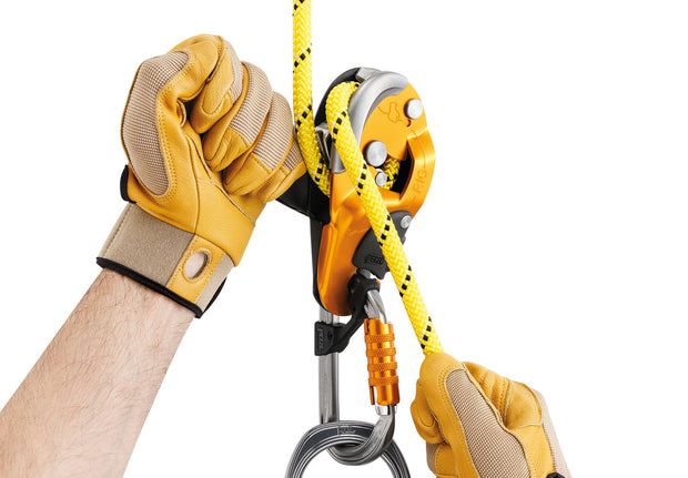 RIG - Petzl - Coast Ropes and Rescue - Canada