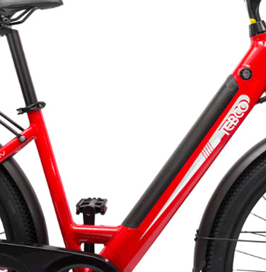2021 Tebco Discovery Electric Bike
