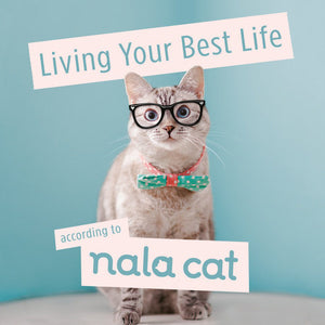 Living Your Best Life According to Nala Cat
