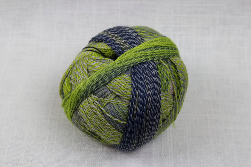 schoppel-wolle zauberball crazy wool nylon fingering self-striping 2204
