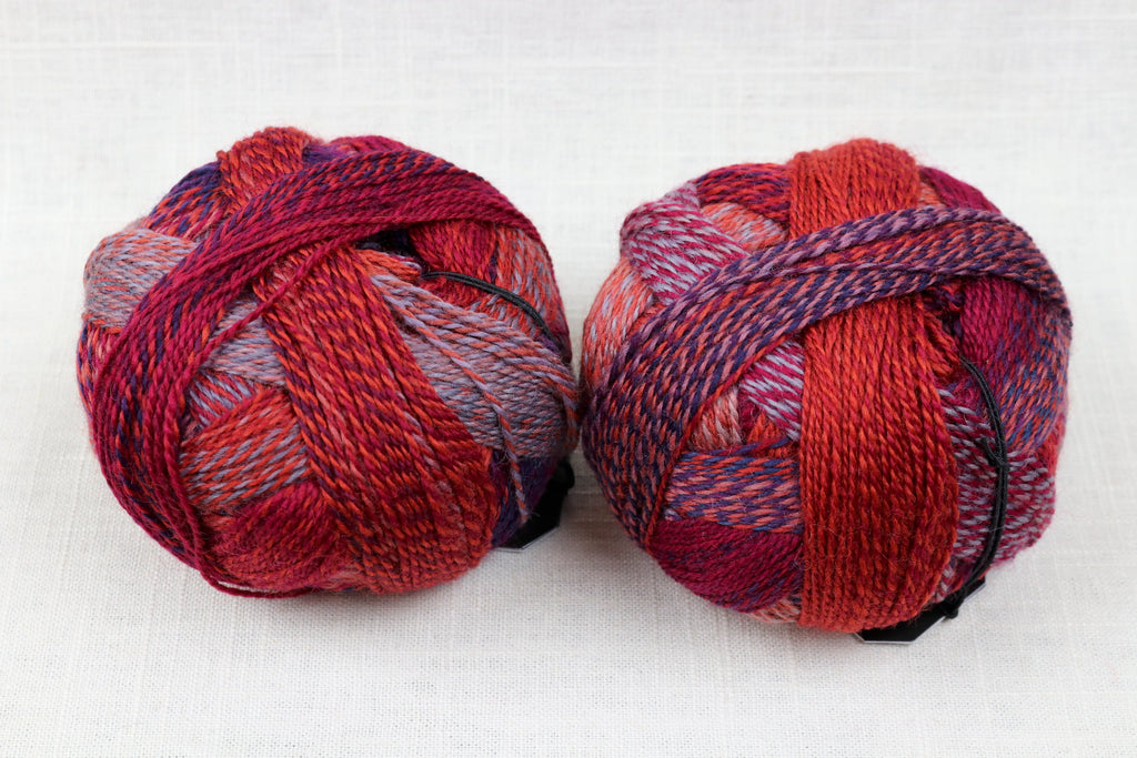 schoppel-wolle zauberball crazy wool nylon fingering self-striping 2231