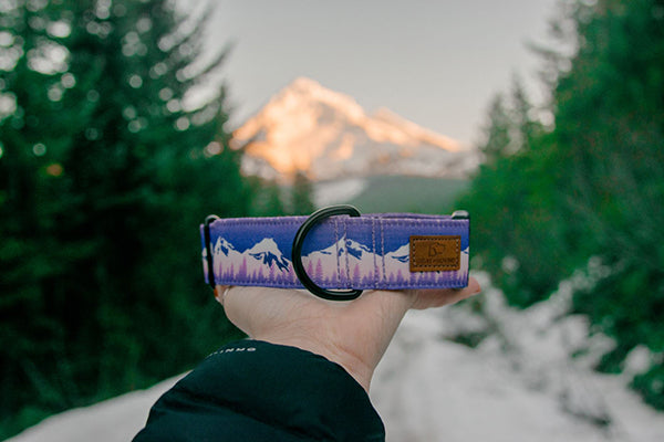 a beautiful hand sewn dog collar from gray and hound is held in front of a serene mountain landscape in the Pacific Northwest