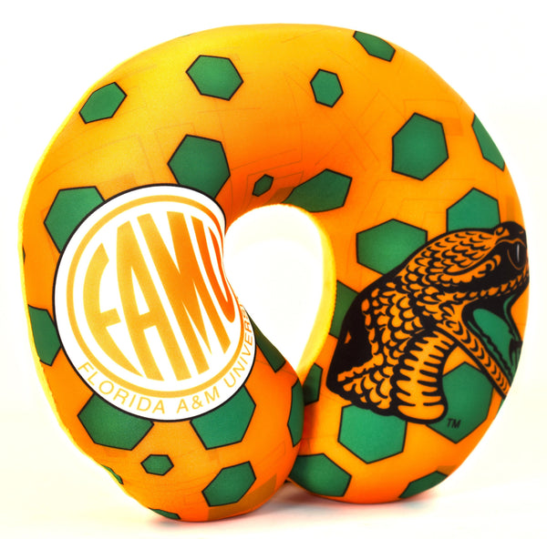 FAMU in Orange