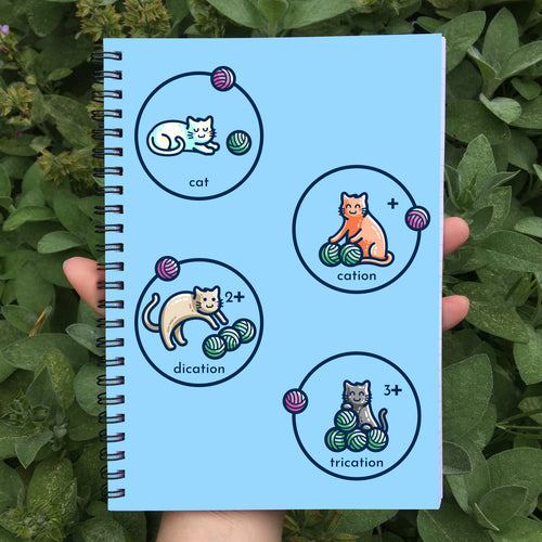 cat, cation, dication and trication represented as cats with balls of wool on a blue spiral notebook being held in a hand
