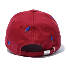 Load image into Gallery viewer, ALLOVER EMBROIDERY CAP HEADWEAR XLARGE