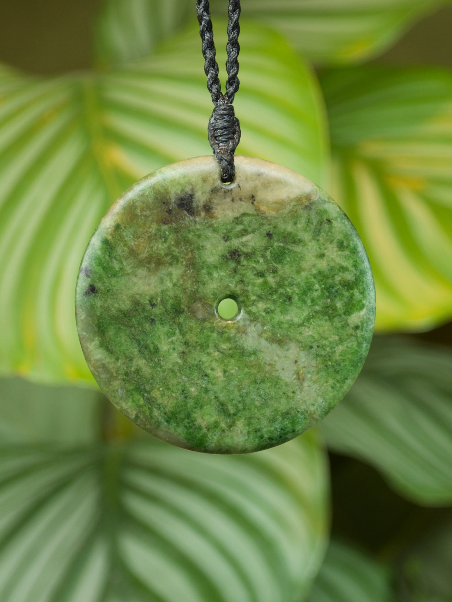 Large Koru Raukaraka Kawakawa Pounamu Pendant New Zealand Greenastone