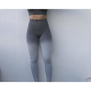 High Waisted Seamless Leggings