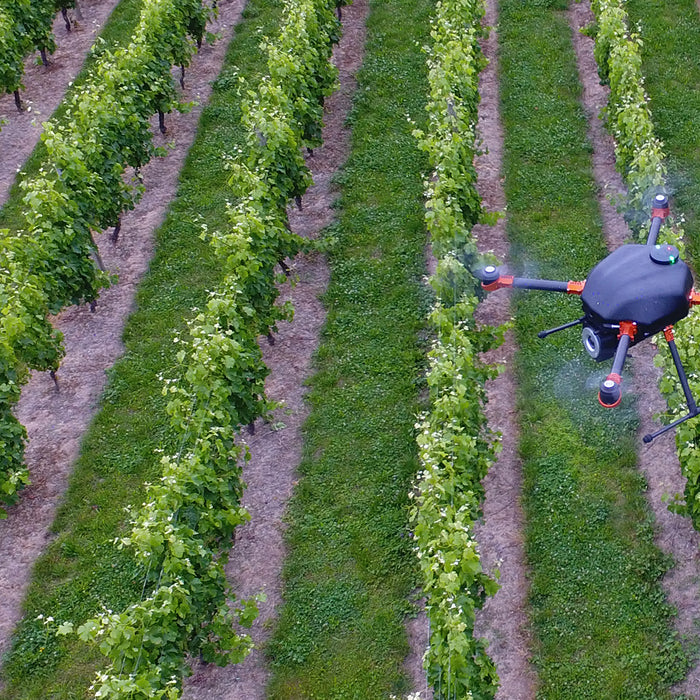 Drones for bird control - how it works