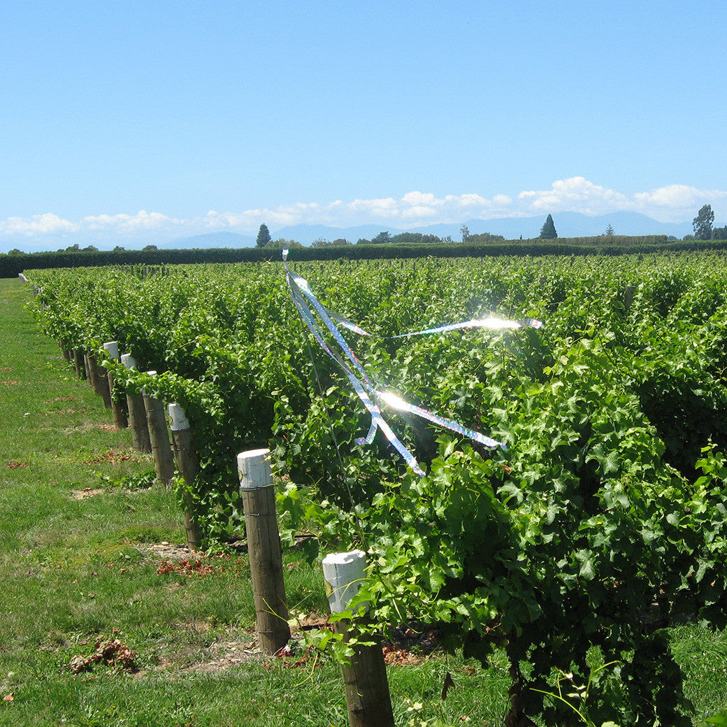 Bird Control in Vineyards